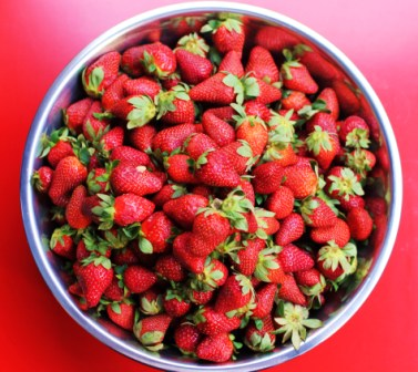 Bowl Of Strawberries Tumblr