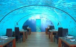 underwater restaurant maldives